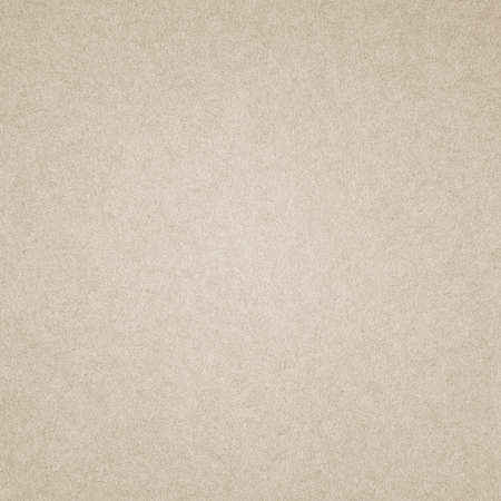 grunge paper texture, background with space for text Stock Photo - 19329666