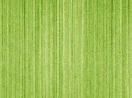 Striped green abstract background photo