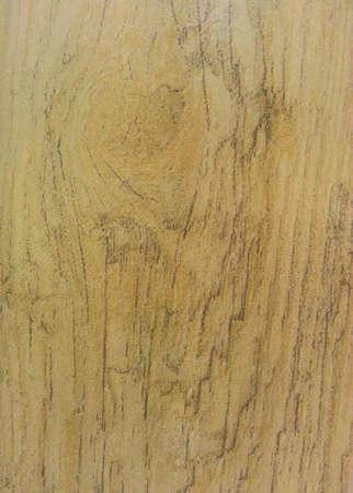 Wood plank flooring Stock Photo - 21848871