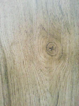 Wood plank flooring photo