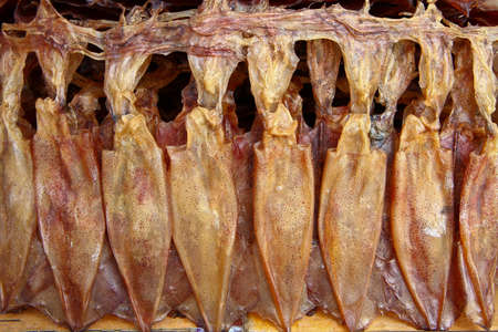 Dried squid photo