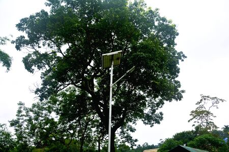 Solar powered street lamp with panel and trees in the background in close up