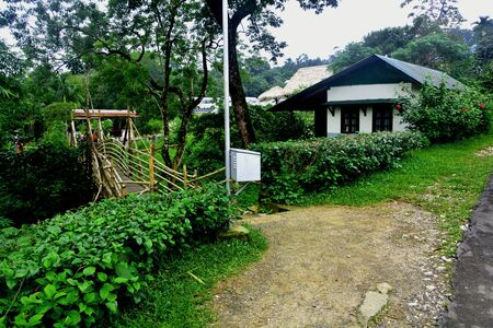 The battery box of a street solar powered lamp with house , bamboo bridge and lots of trees in a village of Shillong, Meghalaya
