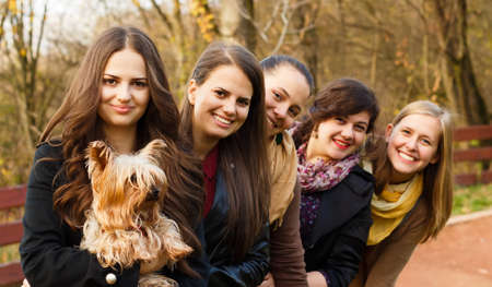 admired: Little Yorkshire terrier being admired by a group of beautiful women  Stock Photo