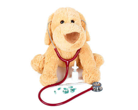 every: Doctor Teddy ready to examine every child!