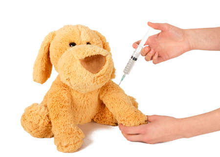 Pediatrician giving protective vaccine to play dog. Stock Photo