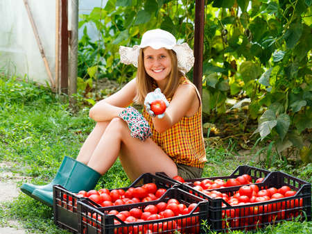 women in boots: Young gardener showing proudly her tomato harvest. Stock Photo