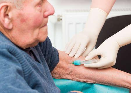 anticoagulant: Doctor que toma la muestra de sangre del paciente anciano para supervisar el tratamiento anticoagulante. Foto de archivo