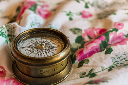 This picture made on the canvas with roses and copper Contain a compass in vintage style.