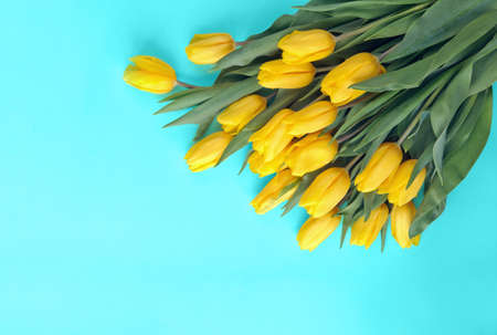 a large bouquet of yellow tulips laid out on a light blue background flat lay