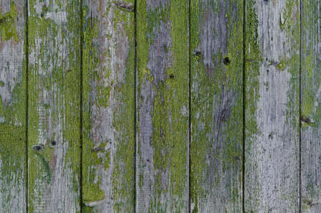 wooden background: old fence with peeling green paint Stok Fotoğraf - 147594698
