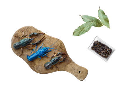 live crayfish on a kitchen board next to spices pepper and bay leaf Stok Fotoğraf