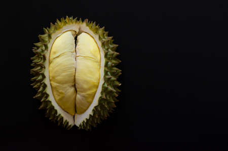 Fresh cut Durian which is king of fruit from Thailand isolated on black background with space for text.