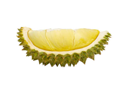 Fresh cut Durian which is king of fruit from Thailand isolated on white background with space for text.