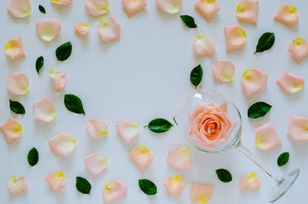 Pink rose in wine glass with its petals and leaves on white background and heart shape space for text for Valentine's day. Flat lay top view background concept.