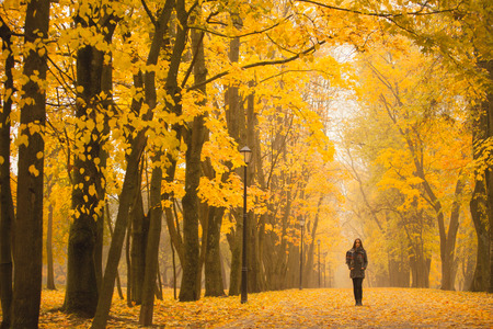 fall landscape: Lonely woman walking in park on a foggy autumn day. Lonely woman enjoying nature landscape in autumn. Autumn day. Girl sitting on grass Color vertical image.