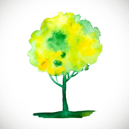 Vector watercolor tree. Vintage tree. Beautiful colorful painting. Painted green tree. Ilustração