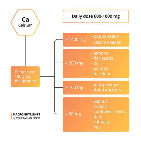 Vector scheme of the nutrients, vitamins and minerals. Daily dose of macronutrients. Basic micronutrients and macronutrients necessary for human health. Calcium - contain in food. Ilustração
