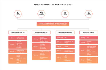 Chart of the nutrients vitamins and minerals food.