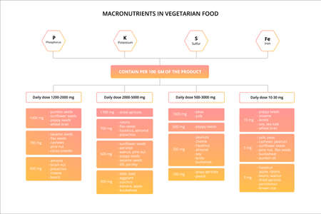 Nutrients in vegetarian food. Scheme of minerals.