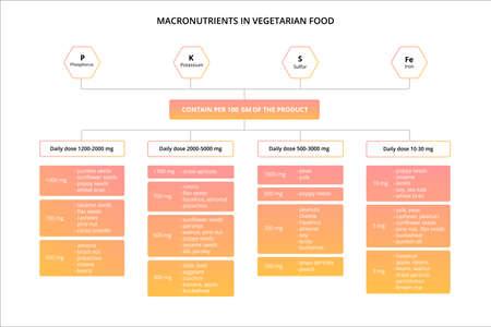 Nutrients in vegetarian food. Scheme of minerals. Illustration