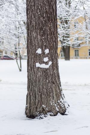 Hello winter! Snow smile on tree. Strange snowman Stock Photo