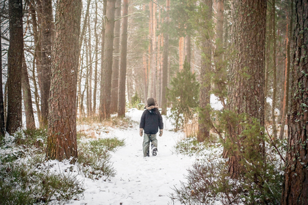 Lone boy walking in the pine tree forest in winter. Terrible thriller concept of alone in forest. 스톡 콘텐츠