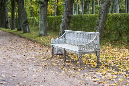 White bench on the path in autumn park. Yellow leaves around. 스톡 콘텐츠