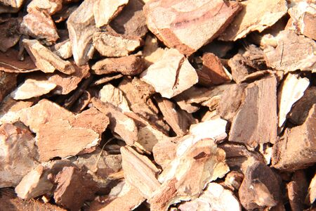 veining: Many wood chips. Stock Photo