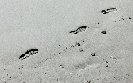Fingerprint of shoes, gym shoes, man, on the sand of a beach.