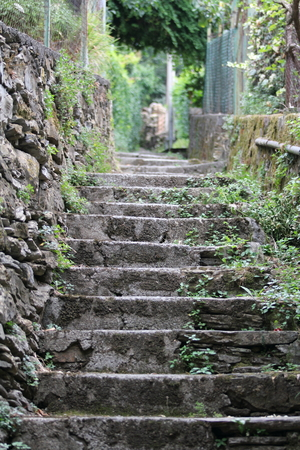 enclosed: A small climb, with steps enclosed in, a wall of private gardens, in the small villages of Liguria, Italy.