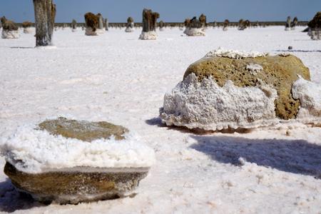 salt lake, salt, Lake Baskunchak in Russia,