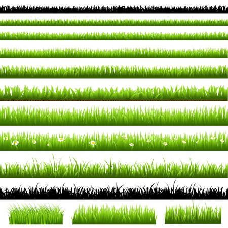 hedges: Green Grass Set, Isolated On White Background, Vector Illustration