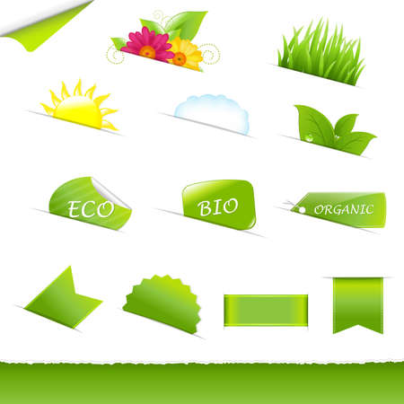 renewed: Collection Eco Design Elements, Isolated On White Background, Vector Illustration