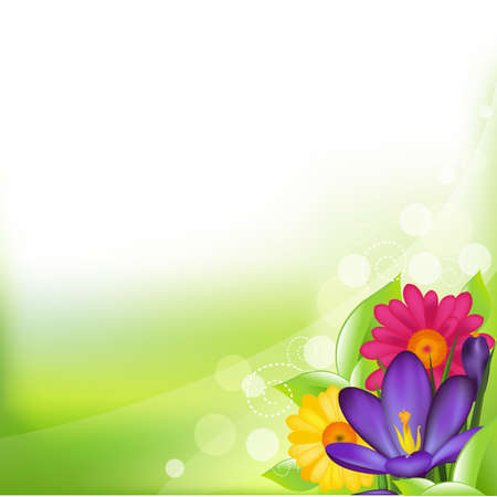 Green Background With Spring Flower, Vector Illustration Vector