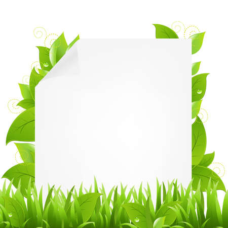 green eco: Paper With Beams And Sprout
