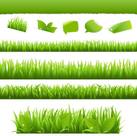 Elementos de diseño de Eco de colección