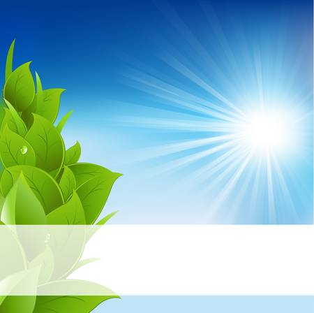 Eco Background Stock Vector - 9660894