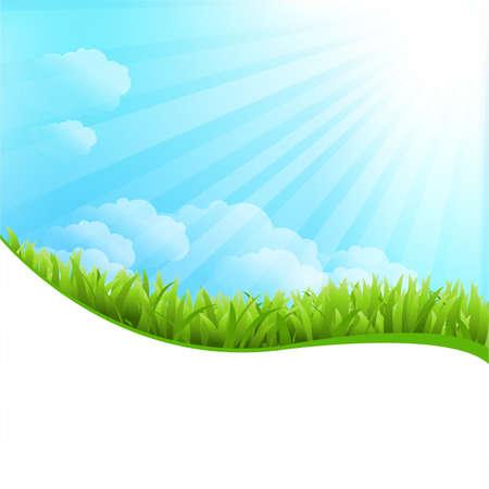 horizon over land: Illustration Of Summer Grass Illustration