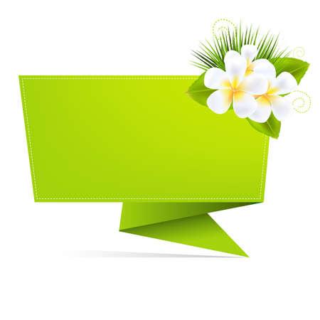 bubble sheet: Eco Origami Paper With Frangipani