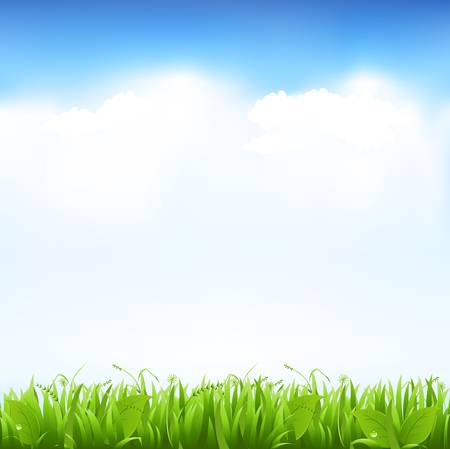 clear sky: Grass And Sky, Vector Illustration Illustration