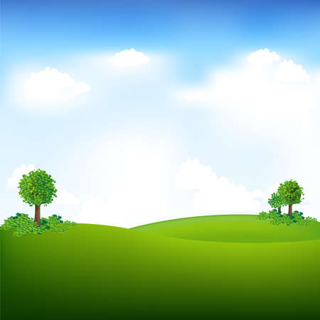 tree in field: Sky And Landscape, Vector Illustration