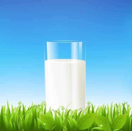 vaso de leche: Vaso de leche en la hierba y cielo azul.