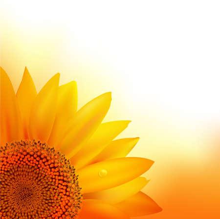 bee garden: Sunflower. Illustration