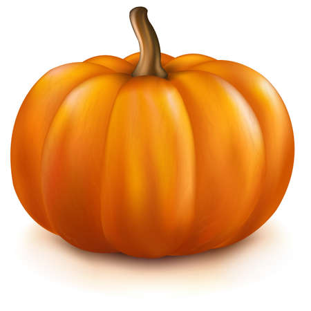 pumpkin: Pumpkin, Isolated On White Background