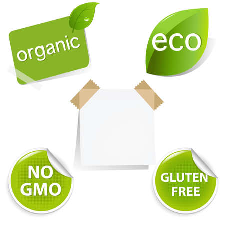 Eco Labels Set, Isolated On White Background. Vector