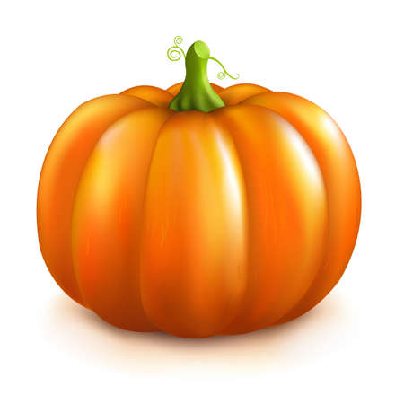 5th: Pumpkin, Isolated On White Background.