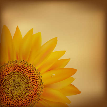 Vintage Paper With Sunflower.