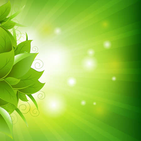 green leafs: Green Background With Leafs And Grass, Vector Illustration