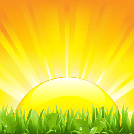 crop: Grass And Sunset, Vector Illustration